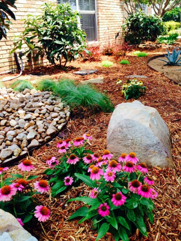 xeriscape landscaping water conserving