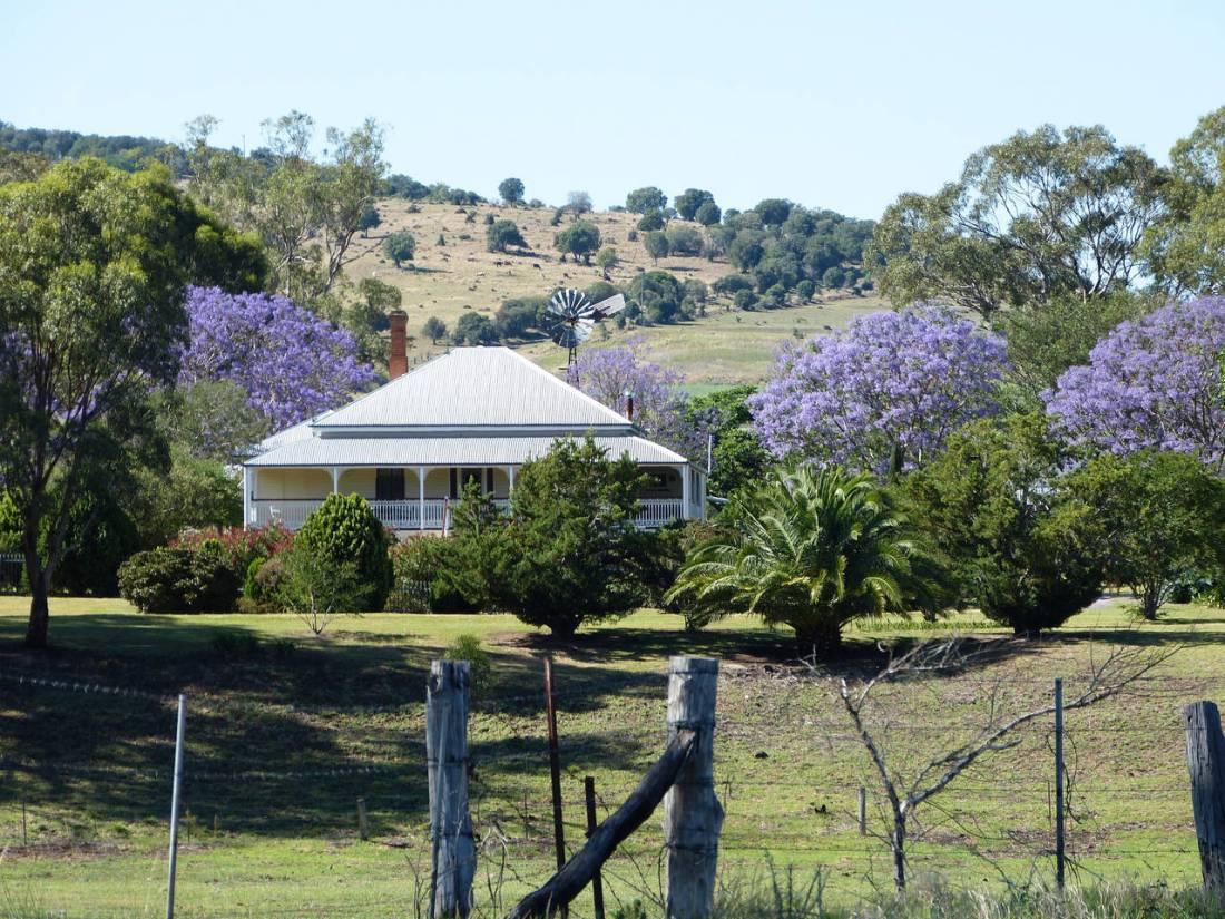 Penny's beautiful beef and grain farm in Australia