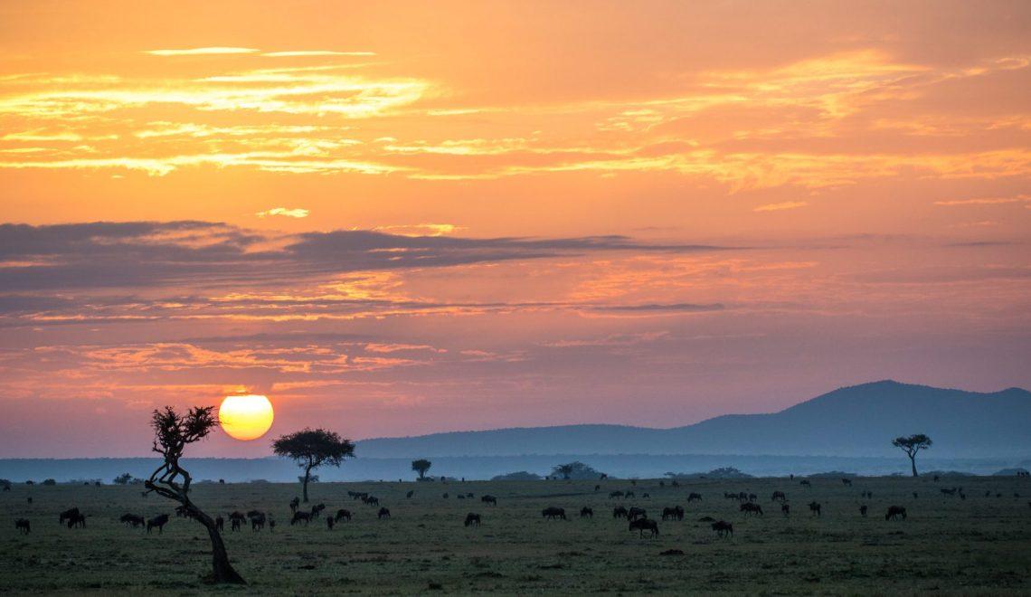 Make it Kenya, Kenya holidays view across savannah