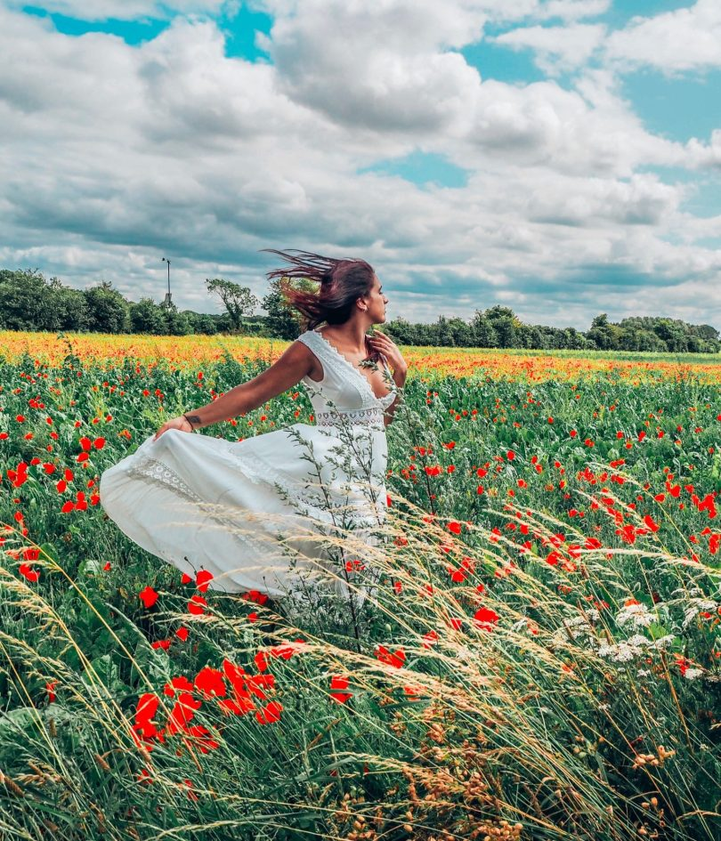Absolutely Lucy in poppy field, domestic violence