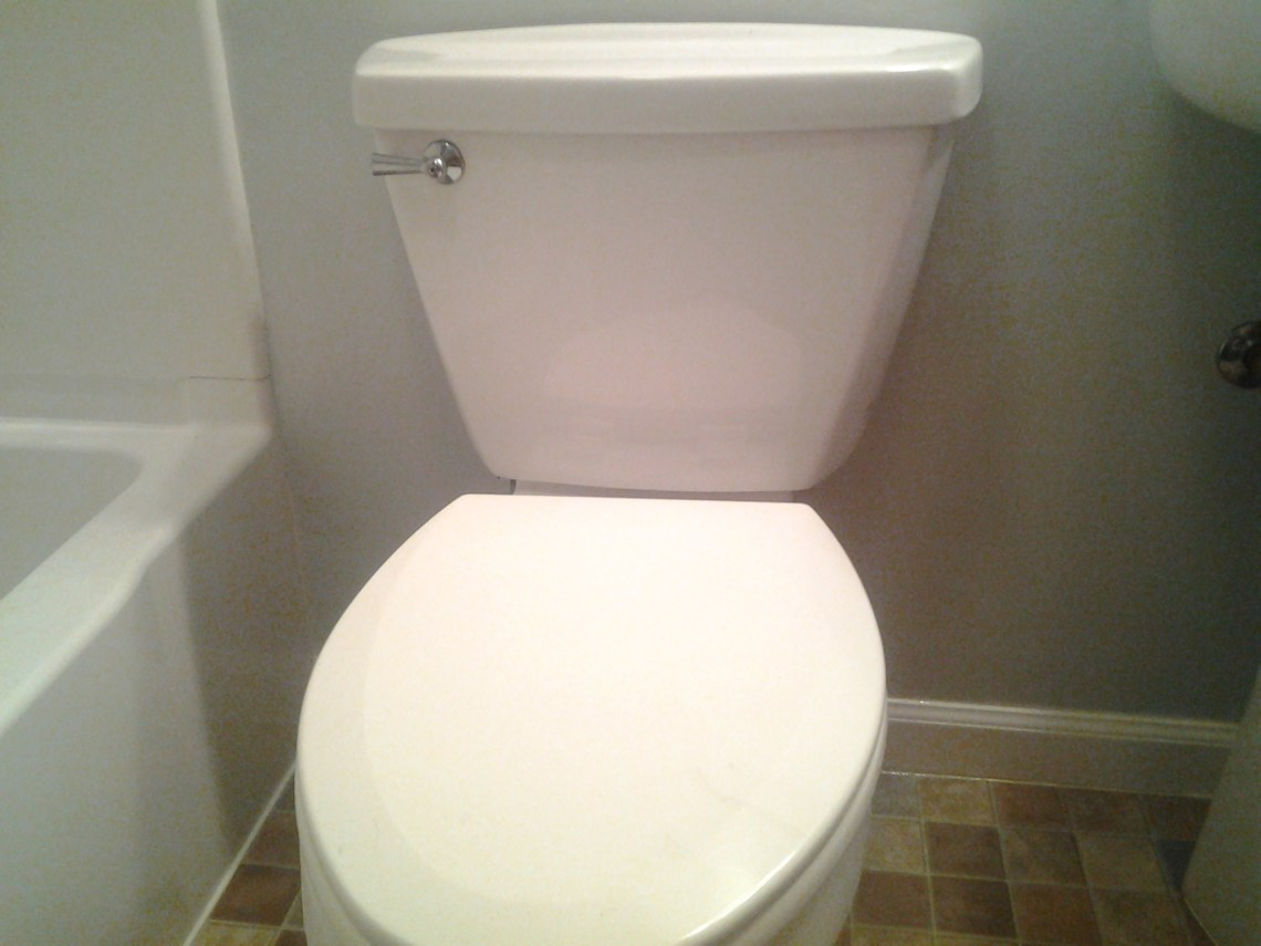 Image Result For What Can You Put In A Toilet To Unclog It
