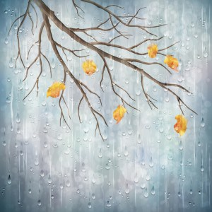 Water dripping on painting of yellow flowers on tree