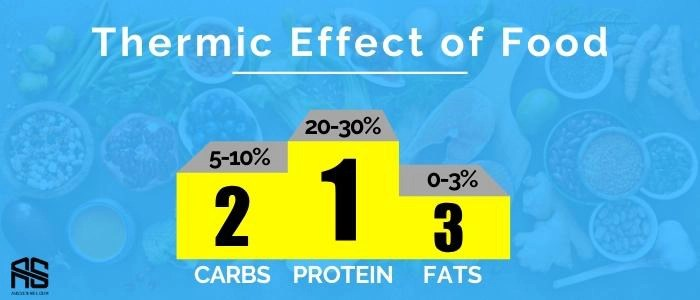 This is the picture showing thermic effect of macronutrients and how poorly fat burning foods affect it