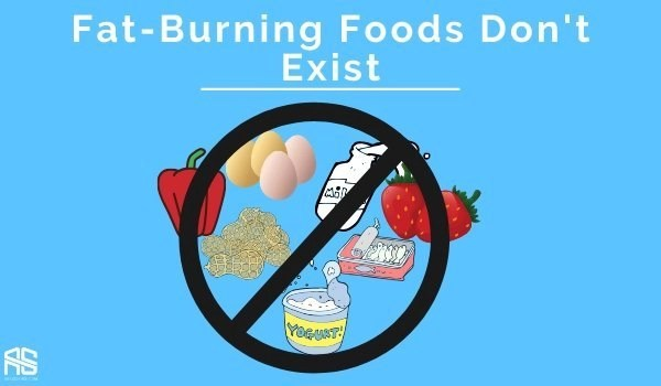 This is the picture which shows that fat burning foods don't exist