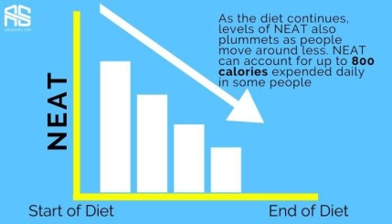 this is the picture of the fourth priority (Neat) that tells how to lose body fat and why neat drops as you diet