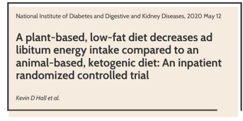 pirmasis tyrimas, parodantis, kodėl neprarandate keto dietos