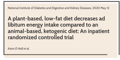 the first study showing why you are not losing on keto diet