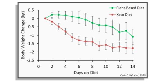 kūno svorio pokyčiai dietos ir augalinės dietos atžvilgiu
