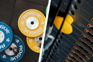 Free Weights vs Machines: What's Better For Muscle & Strength?