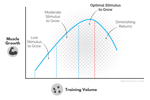 The relationship between training volume and hypertrophy