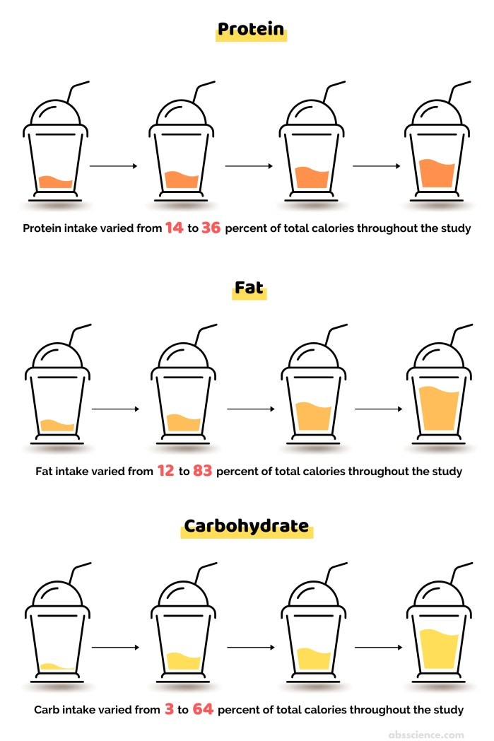 The study design that looked at how different macronutrient ratios affect fat loss