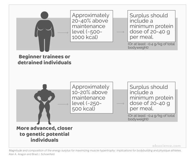 Calorie surplus recommendations to build muscle
