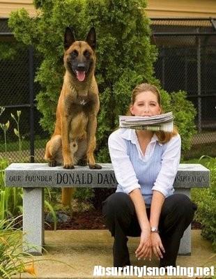 Spaventa ladro fingendosi un cane (Immagine della rete)