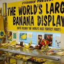 Collazione di banane