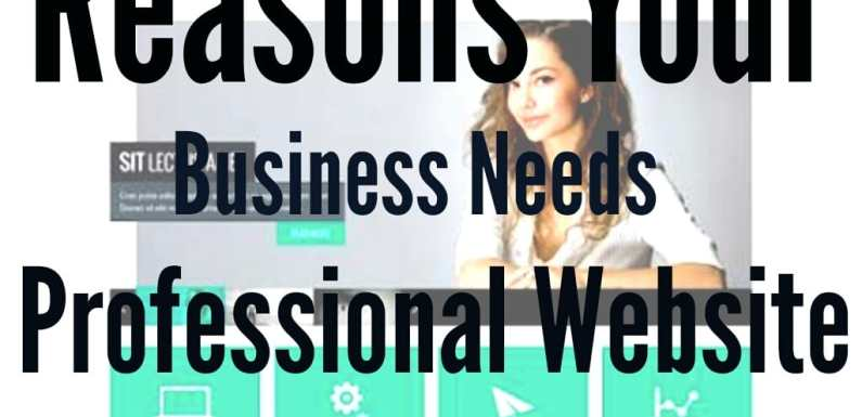 13 More Reasons Why Your Business Needs a Professional Website