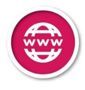 Web Hosting Plan: domain name registration
