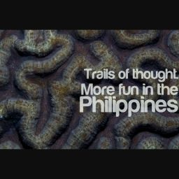 "Download the ""It's More Fun In the Philippines"" Android App"
