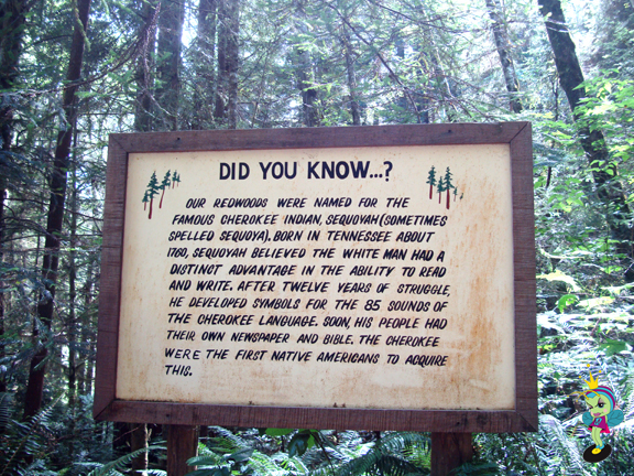 a fascinating Redwood fact