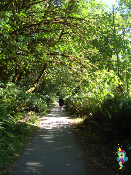I love this path