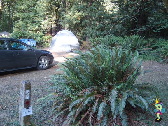Our campsite #65 at the beautiful Atwell Mill campground