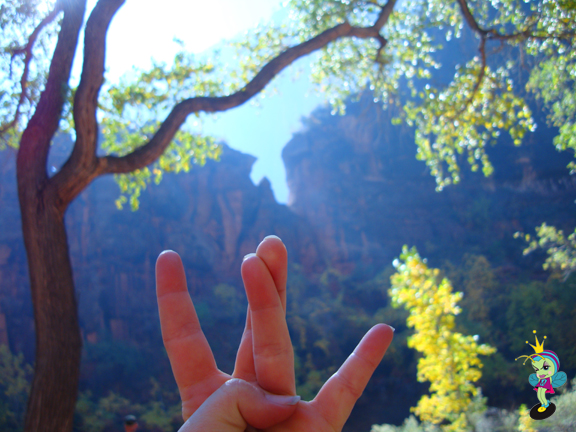 WuTang Rock in Zion National Park hee hee