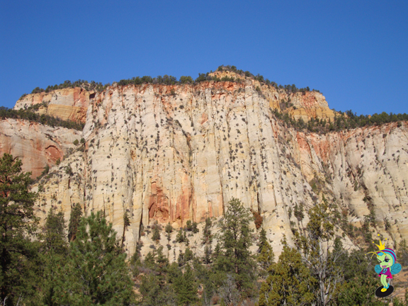 the canyon rose high above us...