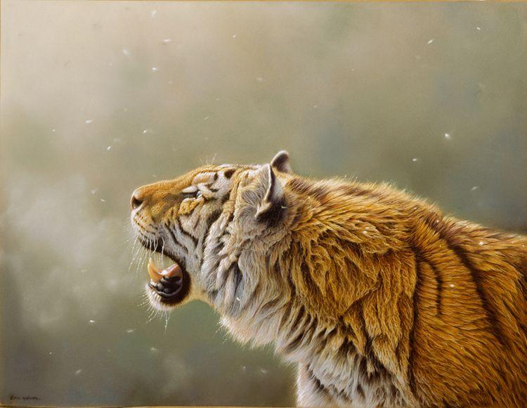 Eric-Wilson-wildlife2