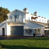 حصان فوق المنزل