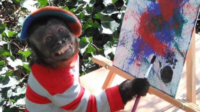 القردة كرستال تستلم جائزة الأوسكار للحيوانات