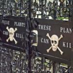 النباتات السامة