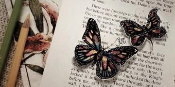 Drawing Butterflies