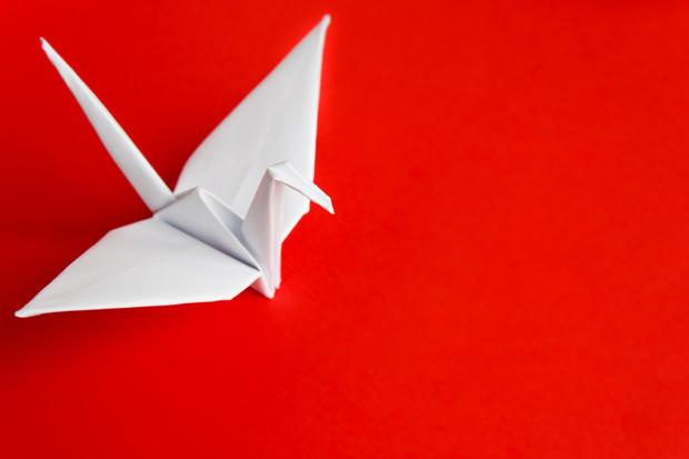 طائر الكركي الورقي 252164