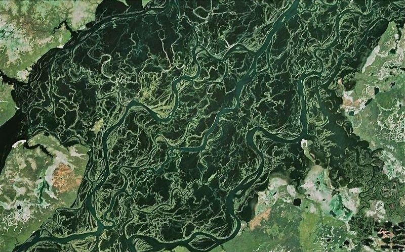 تفرعات أنهار جميلة