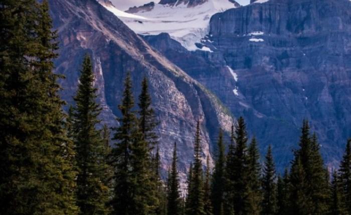 جبال روكي الكندية 11091624