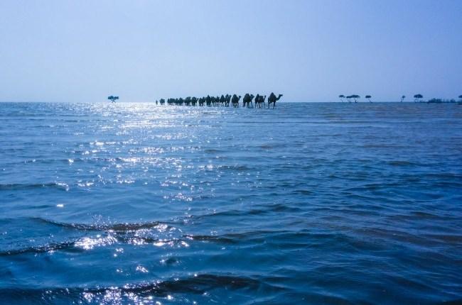 شاطئ جازان 22121615