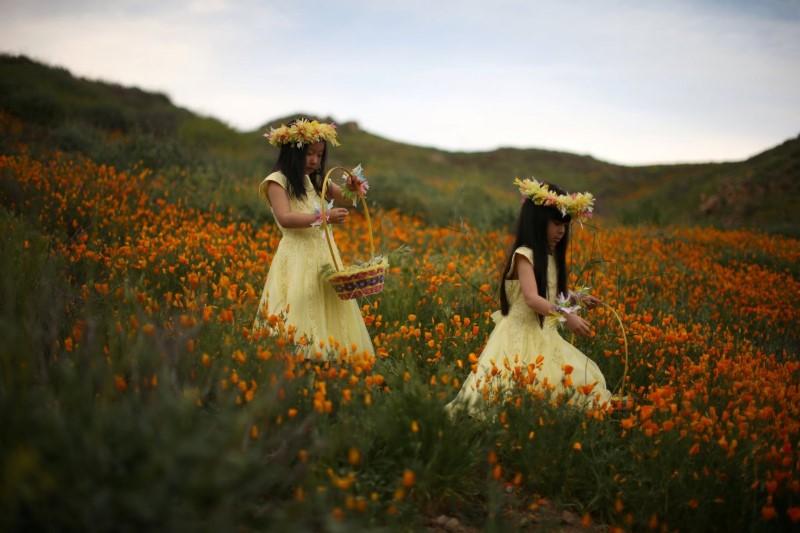 أجمل صور رويترز