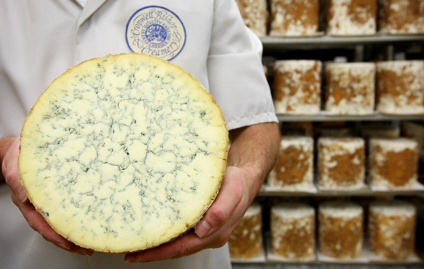 رائحة الجبنة