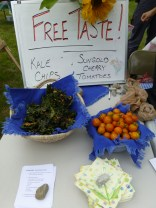 Free Kale Chips and Cherry Tomatoes