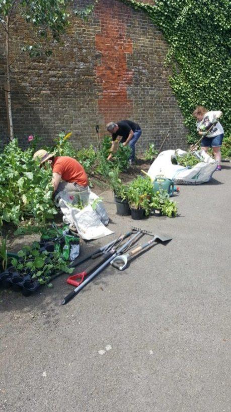 Abundance London Bridge Garden Creation