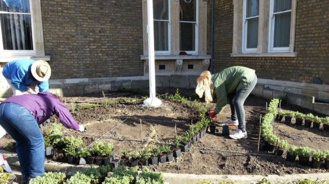 Abundance London Flag Pole Garden planting
