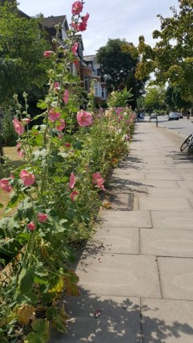 Abundance London High Road Planting