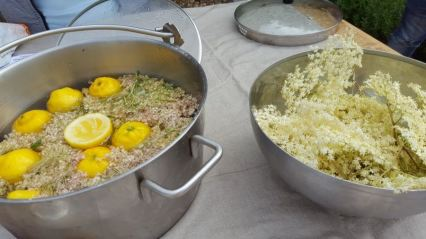 Abundance London Salopian Kitchen Garden elderflower