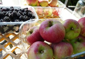 Blackberries-and-Apples-1024x768 to take away-
