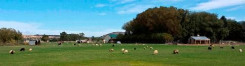 11883_Stucky_Farm_Panorama.jpg