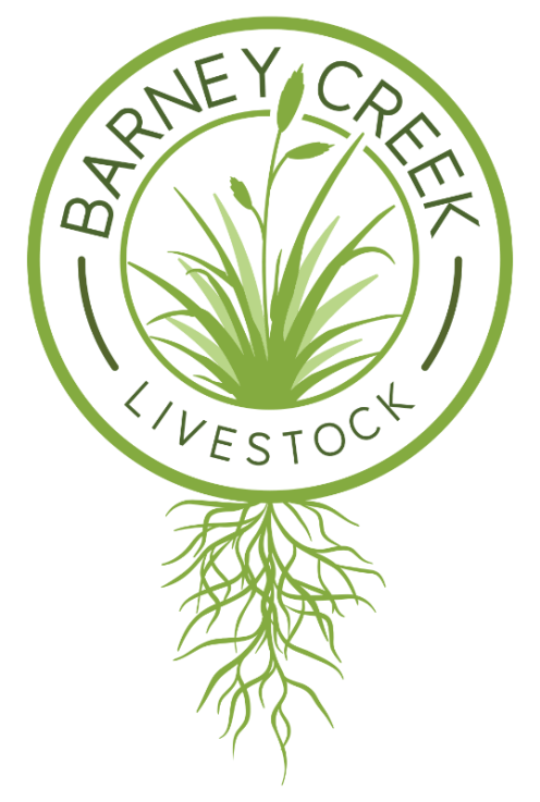16923_Barney-Creek-Logo-Color-1.png
