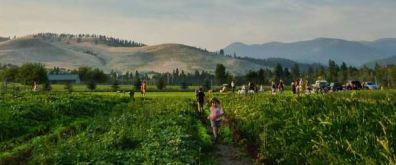 Garden-City-Harvest-Photo-11.jpg