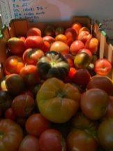 Clark Fork Organics