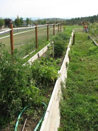 image of garden beds