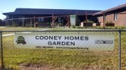 Cooney2_2014
