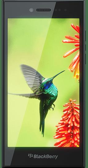 blackberry-leap1